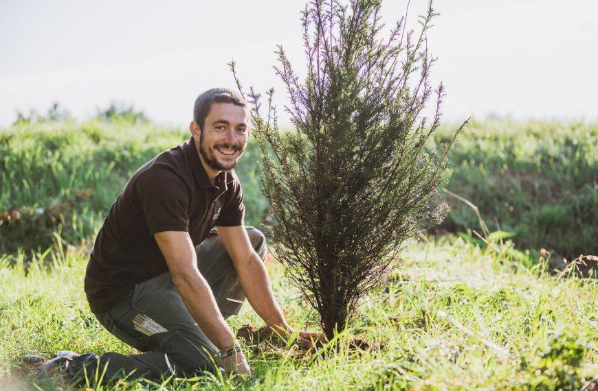 Gartengestaltung Hablesreiter